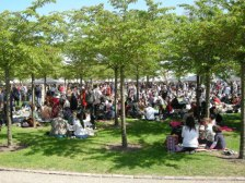 Picnicking in the park and enjoyed the performances on stage while eating Japanese bento